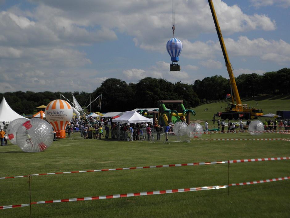 Die Bonner Rheinaue - ein passender Rahmen für ein familienfreundliches (Ballon-)Festival