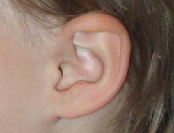 Hörbeispiele
