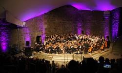 Projekte und Konzerte